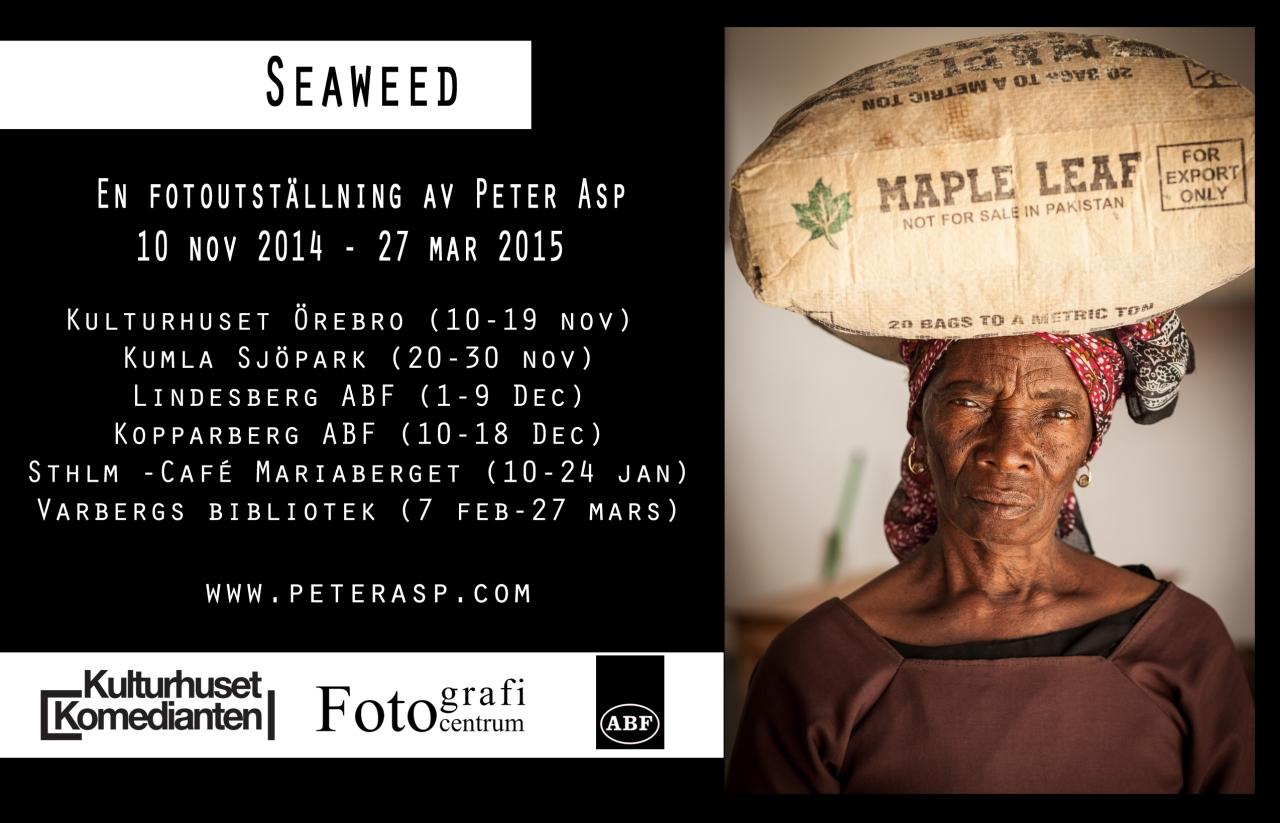 annons_seaweed